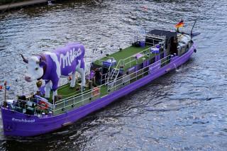 Perfekt gelungene Milkawerbung auf der Elbe